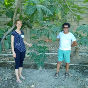 surrounded-by-a-breadfruit-tree-and-holding-the-branch-of-a-young-moringa-tree